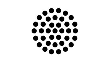modele_orga6